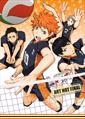 Haikyu!! : Season 2